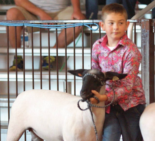 Barb Slone | Greene County News Future 4Hers got to try their hand at sheep showmanship on Aug. 1. With the help of an adult assistant children below 4H age 9 got to show a sheep. Landon Terrill won first place in the pool of serious contenders as they all took their showing seriously for the judge. Learning how its done hopefully ready to show their own animals when they reach 4H age.
