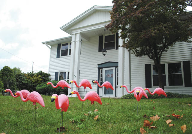 Whitney Vickers | Fairborn Herald Flamingos will soon flock local yards to help support the Fairborn Music Club which supports funding for music programs at Fairborn City Schools.