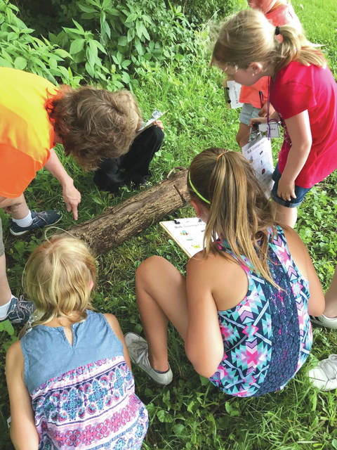 Submitted photo Participants undertaking a bug scavenger hunt as part of the camp.