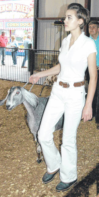Carrie Dant makes her way around the arena with her goat. Dant was second in her class and second overall amongst all senior showmen.