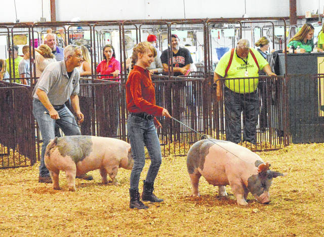 Whitney Vickers and Dave Deskins, the superintendent of the Greene County Career Center (left), were the finalists in the second flight of celebrity competitors during the Celebrity Swine Showmanship event, Aug. 1 at the Greene County Fair. In the opening competition, WHIO TV's Gabrielle Enright won, with WRGT TV's Megan O'Rourke finishing second.
